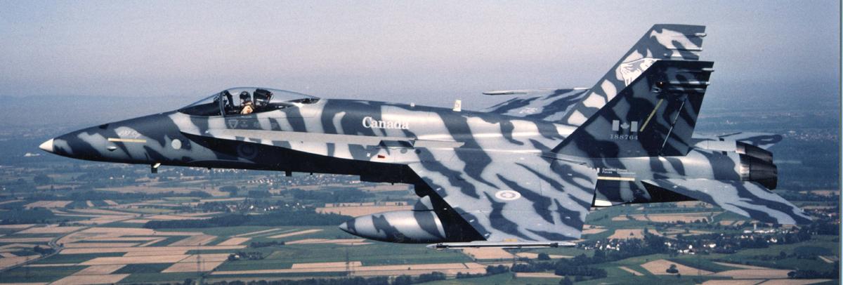F-18 Canada 438 Squadron Tiger Meet decal set 48. 037